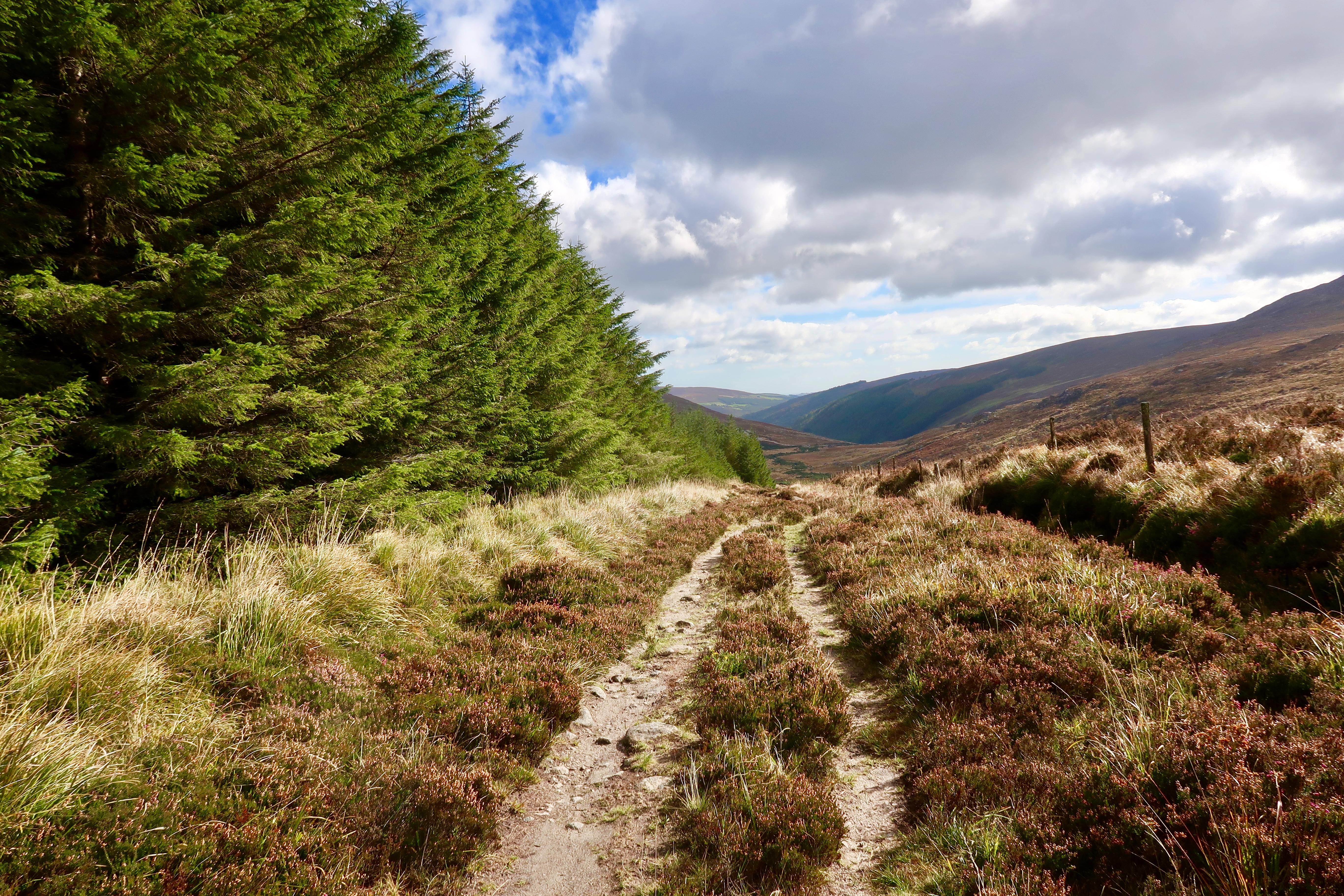 Walk the Wicklow Way